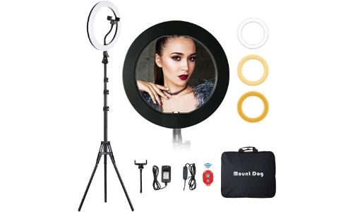 Best Ring Light with stand for TikTok