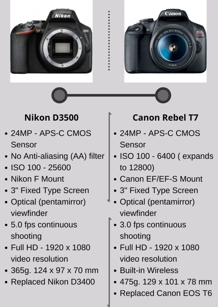 Nikon D3500 VS Canon Rebel T7: Which is Best For Vlogging