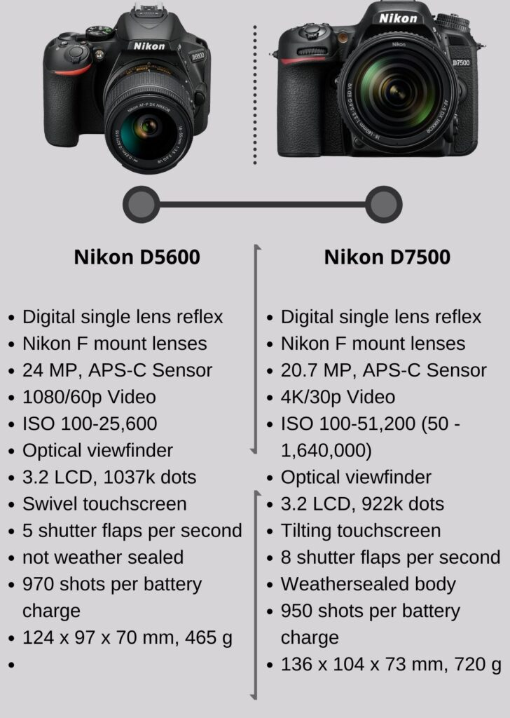 Nikon D5600 VS D7500 Detailed comparison